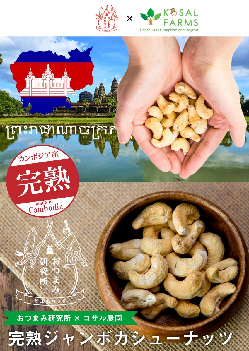 おつまみ研究所×コサル農園完熟ジャンボカシューナッツ