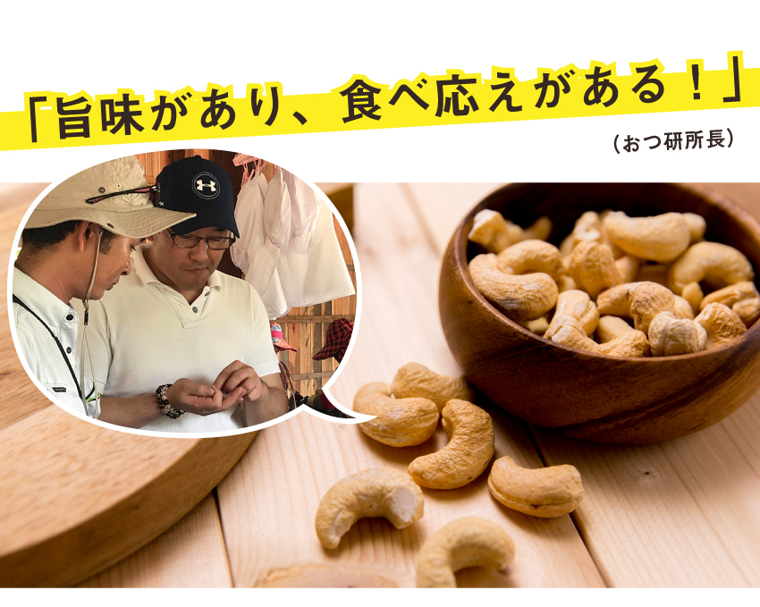 ジャンボカシューナッツは旨味があり、食べごたえがある